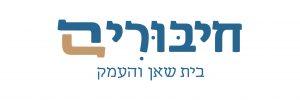 לוגו כללי חיבורים